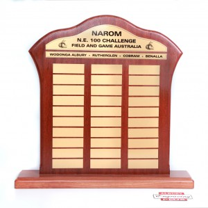Plaques cut and printed for a custom perpetual trophy